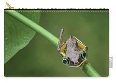 Carry-all Pouch featuring the photograph Lemur Tree Frog - 1 by Nikolyn McDonald