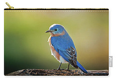 Lenore's Bluebird Carry-all Pouch