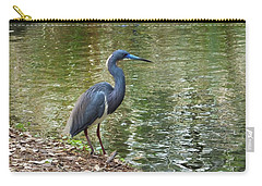 Lesser Blue Heron In Mating Plumage Carry-all Pouch by Judy Wanamaker