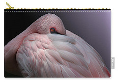 Lesser Flamingo Resting Carry-all Pouch