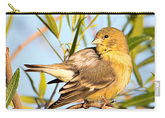 Carry-all Pouch featuring the photograph Lesser Goldfinch by Dan McManus