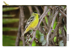 Carry-all Pouch featuring the photograph Lesser Goldfinch H57 by Mark Myhaver