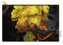Carry-all Pouch featuring the photograph Let The Sunshine In by Elaine Teague
