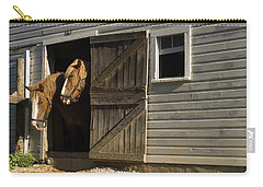 Carry-all Pouch featuring the photograph Let's Go Out by Sally Weigand