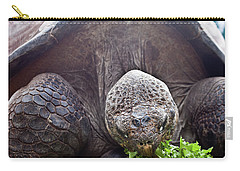 Carry-all Pouch featuring the photograph Life Begins At 60 For Vegetarian by Miroslava Jurcik