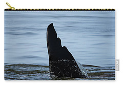 Carry-all Pouch featuring the photograph Life Cycle - Wildlife Art by Jordan Blackstone