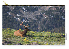 Life Is Good On The Mountain Top Carry-all Pouch