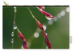 Carry-all Pouch featuring the photograph Light And Life by Kerri Farley