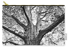 Light, Shadows And Texture Carry-all Pouch by Karen Stahlros
