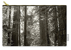 Light Through Redwoods Carry-all Pouch