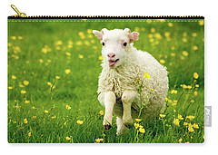 Lilly The Lamb Carry-all Pouch by Joan Davis