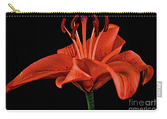 Lily 11018-1 Carry-all Pouch