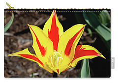 Lily Tulip Carry-all Pouch