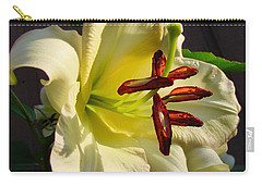 Lily's Morning Carry-all Pouch by Pamela Clements