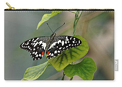 Carry-all Pouch featuring the photograph Lime/chequered Swallowtail Butterfly by Paul Gulliver