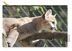 Carry-all Pouch featuring the photograph Lion Around by Laddie Halupa