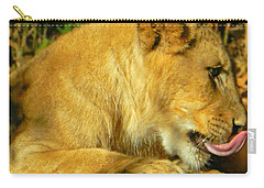 Lion Cub - What A Yummy Snack Carry-all Pouch by Emmy Marie Vickers