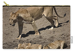 Lion Cubs And Mom Get A Drink Carry-all Pouch by Darcy Michaelchuk