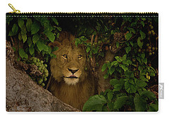 Lion In A Tree-signed-#9841 Carry-all Pouch