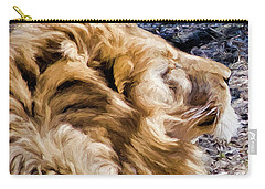 Lion In A Warm Breeze Carry-all Pouch