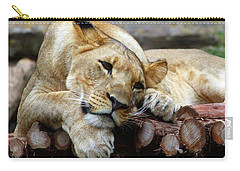 Lion Resting Carry-all Pouch