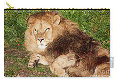 Lion Resting In The Sun Carry-all Pouch