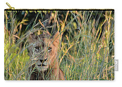 Lion Warily Watching Carry-all Pouch