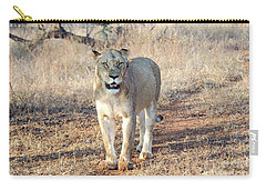 Lioness In Kruger Carry-all Pouch by Pravine Chester