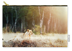 Lioness In Morning Sunlight After Breakfast Carry-all Pouch