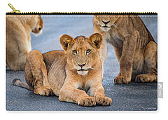 Carry-all Pouch featuring the photograph Lions Stare by Gaelyn Olmsted