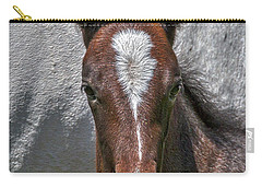 Carry-all Pouch featuring the photograph Lipizzan Horses #2 by Stuart Litoff