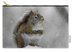 Little Begger Carry-all Pouch by Betty-Anne McDonald