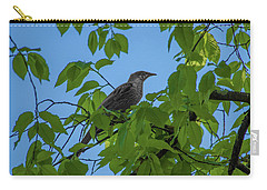 Little Bird In The Tree  Carry-all Pouch