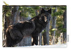 Little Blackie Carry-all Pouch