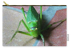 Carry-all Pouch featuring the photograph Little Grasshopper by Denise Fulmer