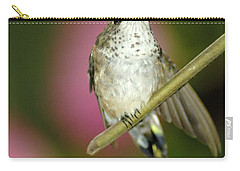 Little Humming Bird Carry-all Pouch