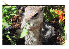 Little Nibbler Carry-all Pouch