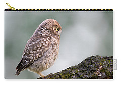 Little Owl Chick Practising Hunting Skills Carry-all Pouch
