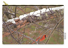 Little Red Bird Carry-all Pouch by Evelina Popilian