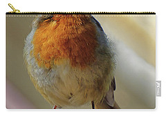 Little Robin Redbreast Carry-all Pouch by Lynn Bolt