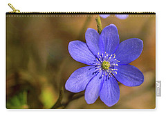 Carry-all Pouch featuring the photograph Liverworts In The Afternoon Sunlight by Jaroslaw Blaminsky