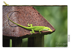 Lizard On Lantern Carry-all Pouch by Stephanie Hayes