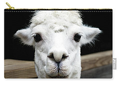 Llama Carry-all Pouch by Lauren Mancke