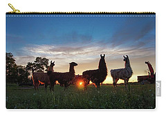 Llamas At Sunset Carry-all Pouch
