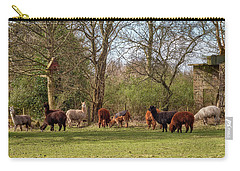 Carry-all Pouch featuring the photograph Alpacas In Scotland by Jeremy Lavender Photography