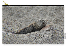 Baby Loggerhead Hatchling Carry-all Pouch