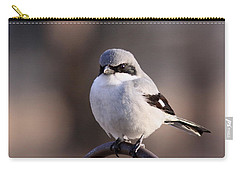 Loggerhead Shrike - Smokey Carry-all Pouch