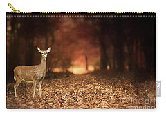 Carry-all Pouch featuring the photograph Lone Doe by Darren Fisher