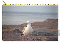 Carry-all Pouch featuring the photograph Lone Gull by  Newwwman
