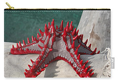 Lone Red Starfish On A Wooden Dhow 3 Carry-all Pouch